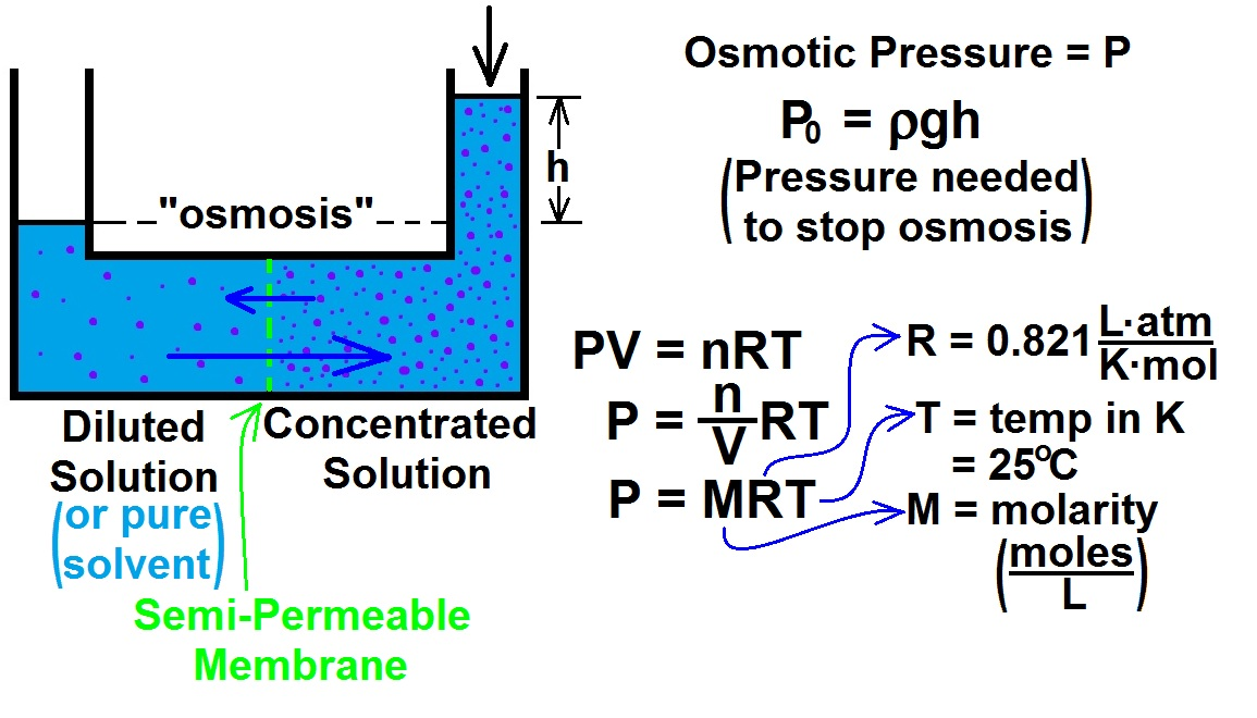 colligative properties & osmotic pressure essay Colligative properties depend on the number rather than the size of the solute particles  colligative properties of water  the colligative properties of solutions consist of freezing point depression, boiling point elevation, vapor pressure lowering and osmotic pressure.